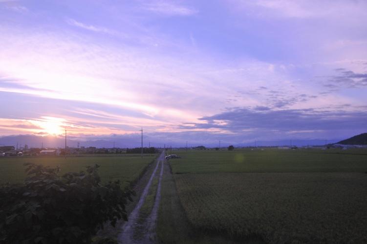 畦道の黄昏