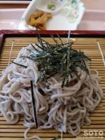 みょうぎ(蕎麦)