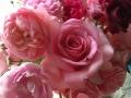 SPAZIOのバラ№9