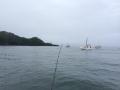 十三浜釣り2017