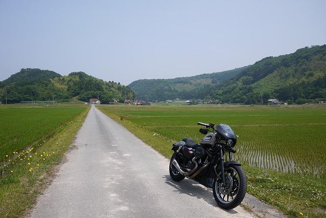 s-11:06水田