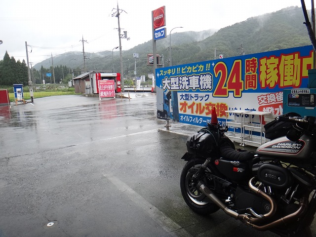 s-11:01ヤタセコイア後雨