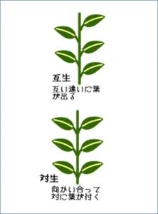 170920blog (3)