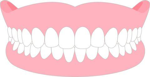 入れ歯 イラスト
