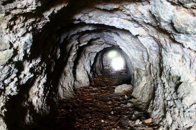 洞窟 生存