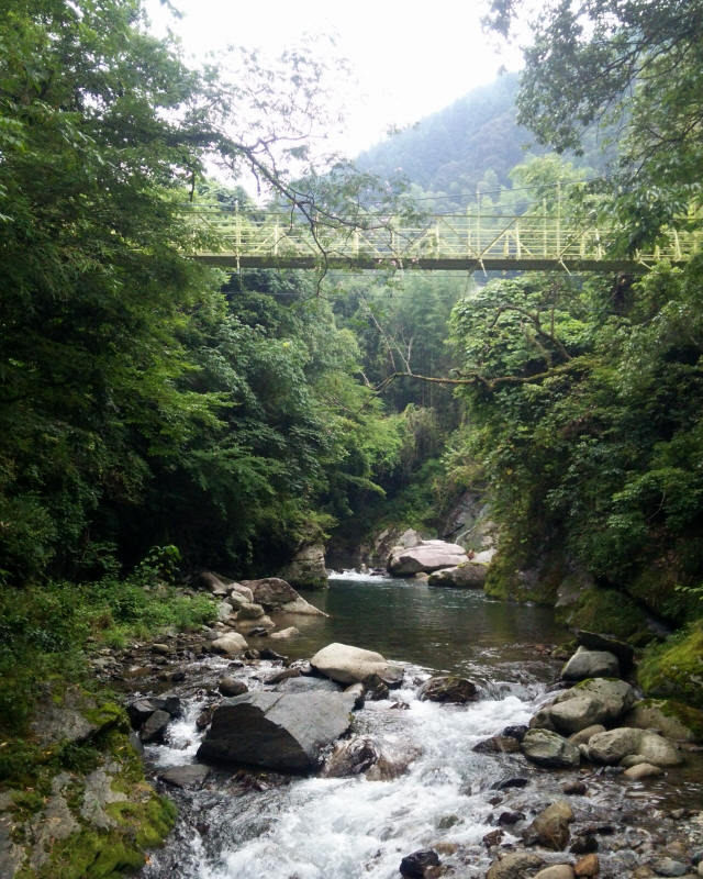 江代の吊橋2