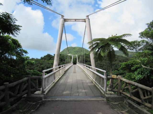 聖紫花の橋c