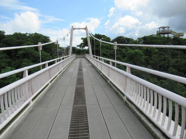 聖紫花の橋3
