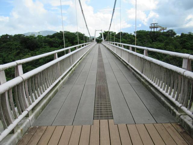 聖紫花の橋5