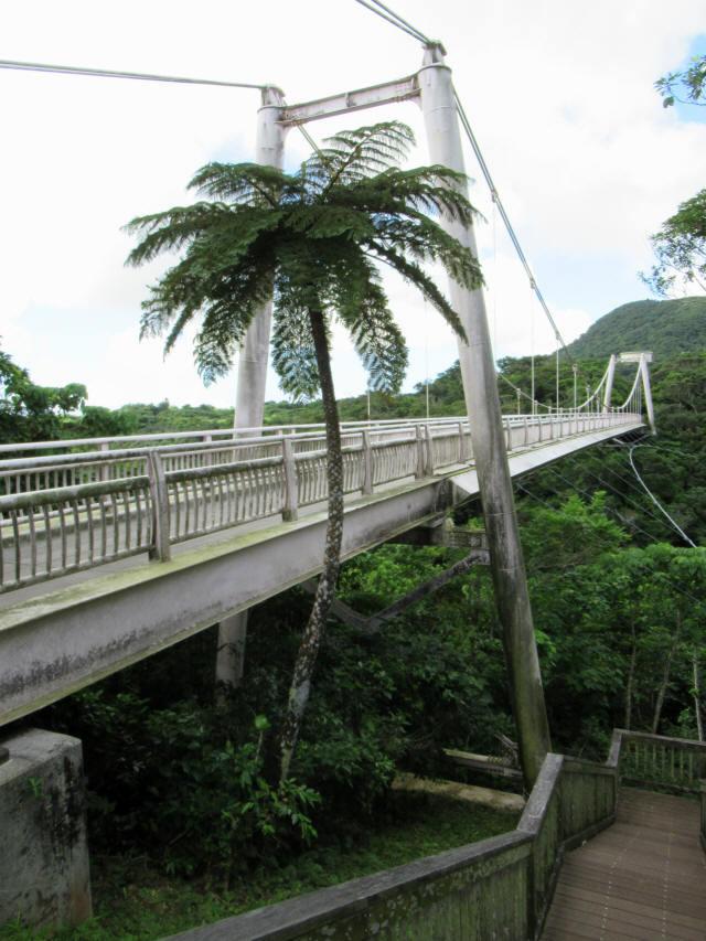 聖紫花の橋6
