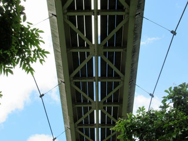 聖紫花の橋8