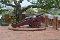野ざらしの大砲170524