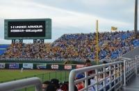 一塁側外野も黄色い170624