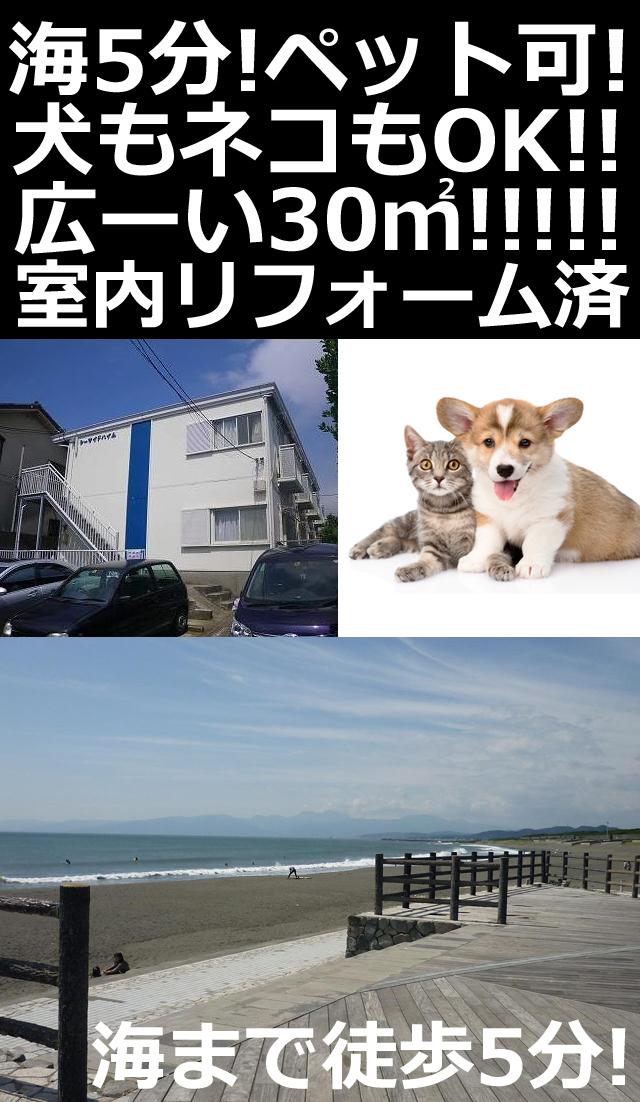 ■物件番号P5293 海近い!海5分!ペット可!広~い14帖!リフォーム済!お手頃5.1万円!