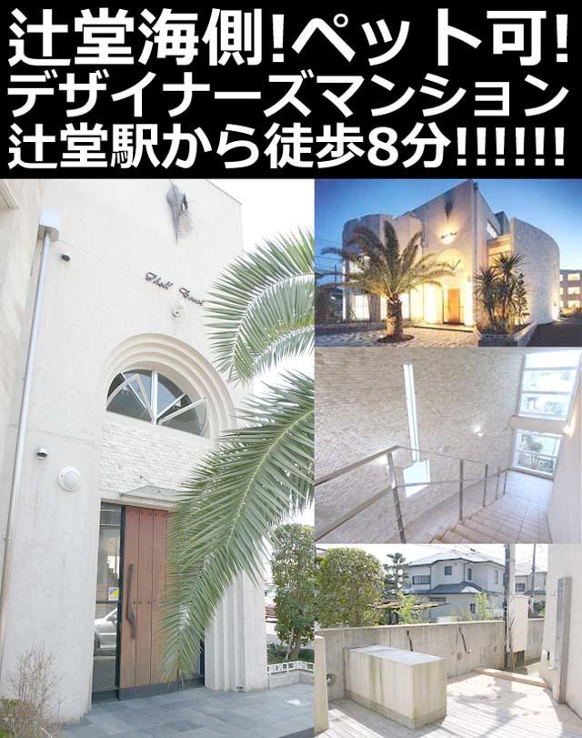 ■物件番号P5021 ペット可!デザイナーズマンション!辻堂海側!駅8分!オシャレな外観!
