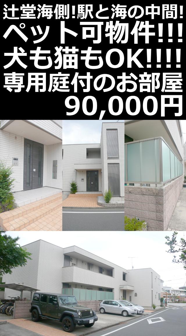 ■物件番号P5042 辻堂海側!駅と海の中間!ペット可!犬も猫も可!専用庭付!1LDK!9万円!