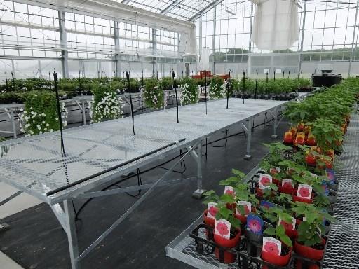 花卉栽培施設内