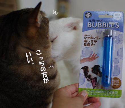 bokusdasdaのコピー