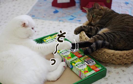 so---yyoのコピー