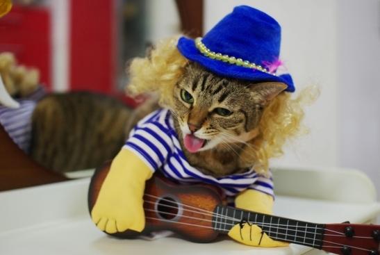 いえーーーいあたちが伝説のギタリストチョコ様よ。