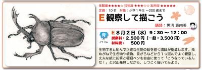 WEB用、夏特E観察画