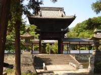 masaoki1.jpg