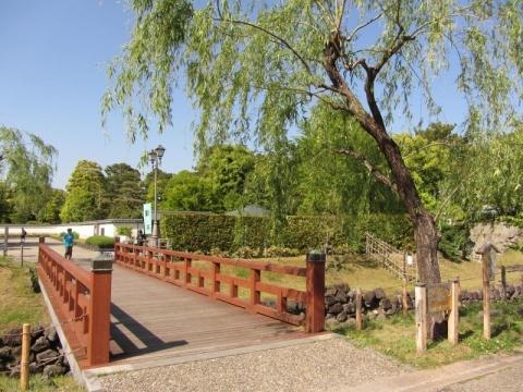 二ノ丸水路脇の柳