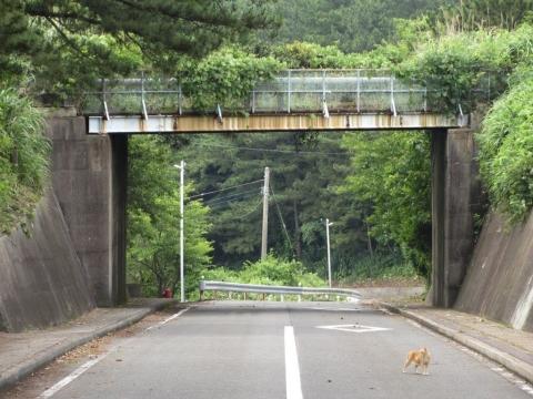 水道管とボタ運搬軌道の跨道橋