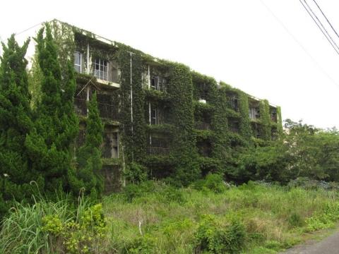蔦に覆われたアパート