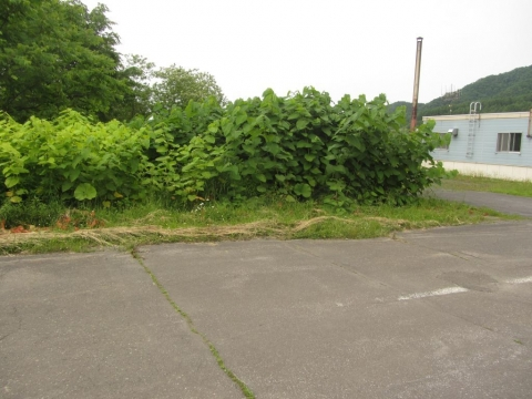 芦の湯駅跡