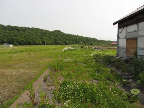 旧鷹泊駅構内