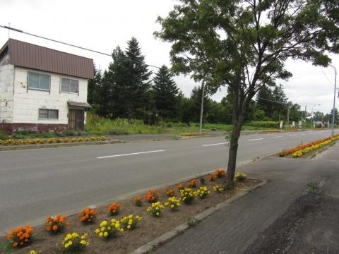 国道275号 旧政和駅付近