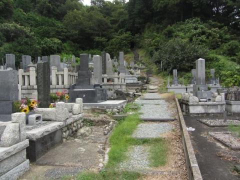 薩た峠旧道薩埵峠旧道(上道・中道)