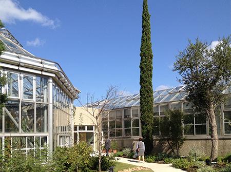 世界を旅する植物館