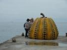 直島の「地中美術館」