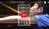 張本智和VSニュイティング(1回戦・1G~4G)世界卓球2017