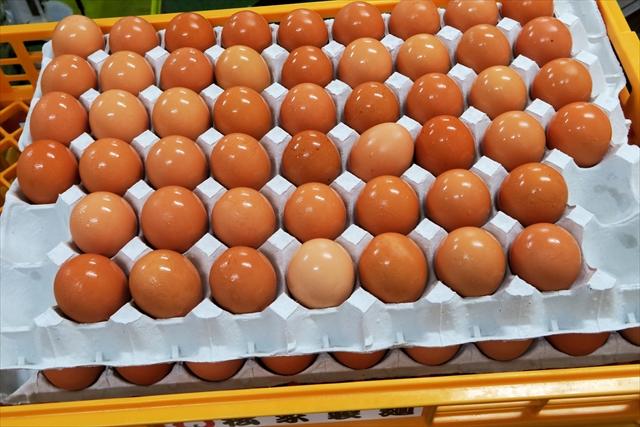 170601-松家製麺-010-S