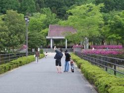 鏡山公園20170513-1