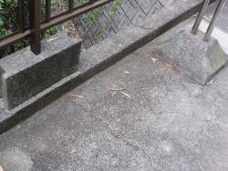 枯葉の掃除ー1