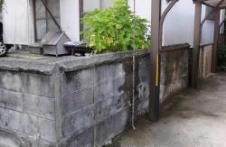 コンクリート塀の苔取りが済んだ画像