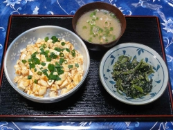夕食は麻婆豆腐20170605