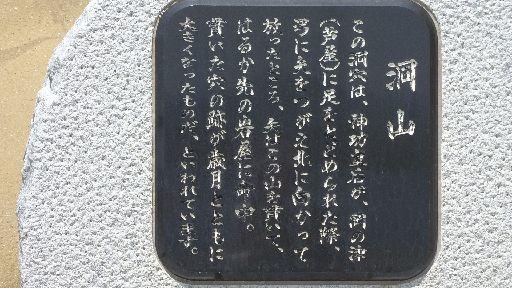 P5043647.jpg