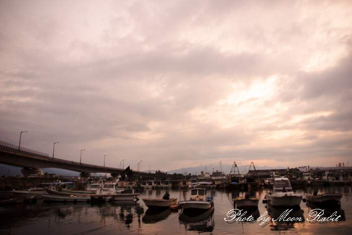 玉津漁港 愛媛県西条市船屋