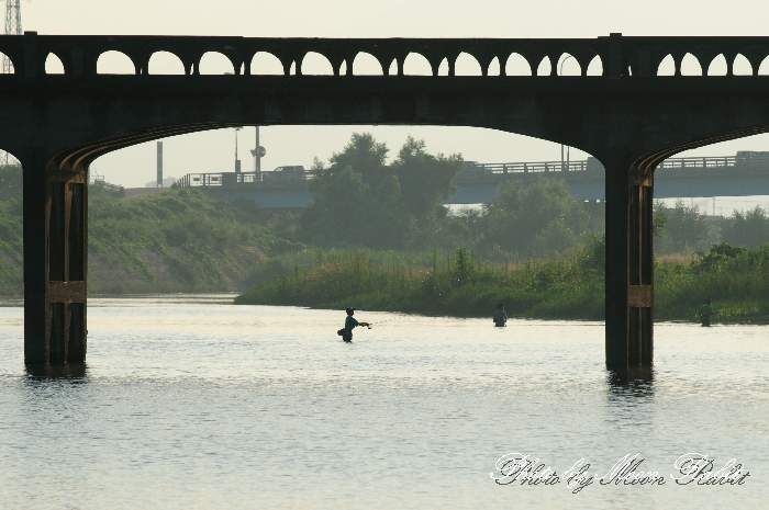 川釣り 中山川橋