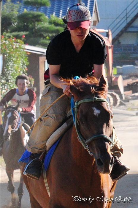 お供馬の走り込み練習