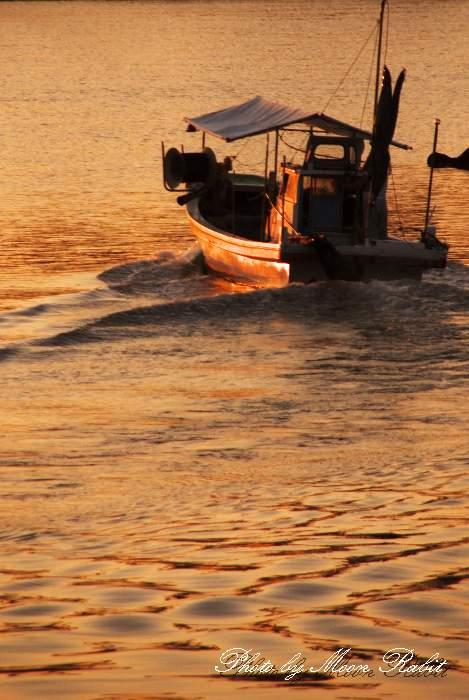 漁船の出港 玉津漁港 愛媛県西条市船屋