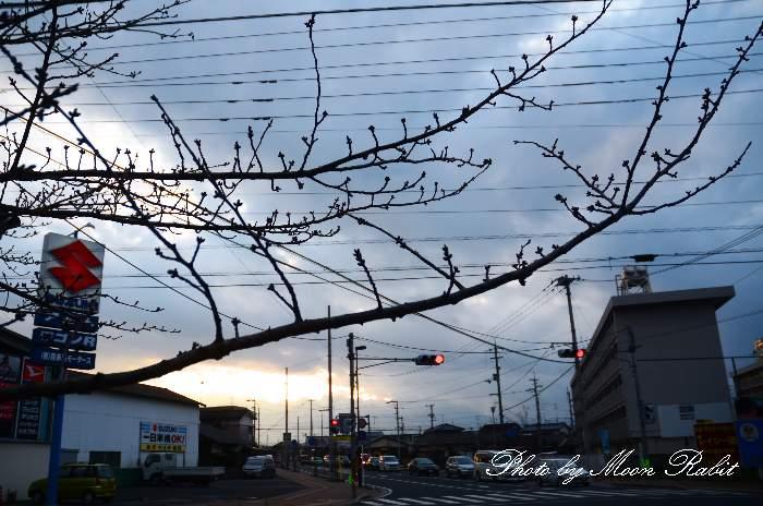 古川玉津橋線の夕暮れ