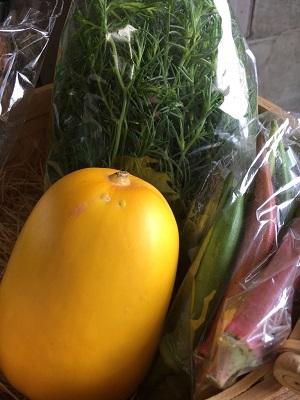 7月野菜セット③