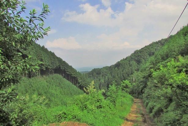 hinodeyama170819-148.jpg
