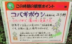 kitmoto170827-207.jpg